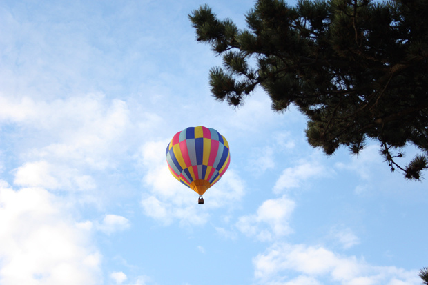 Read The Balloon Festival by April