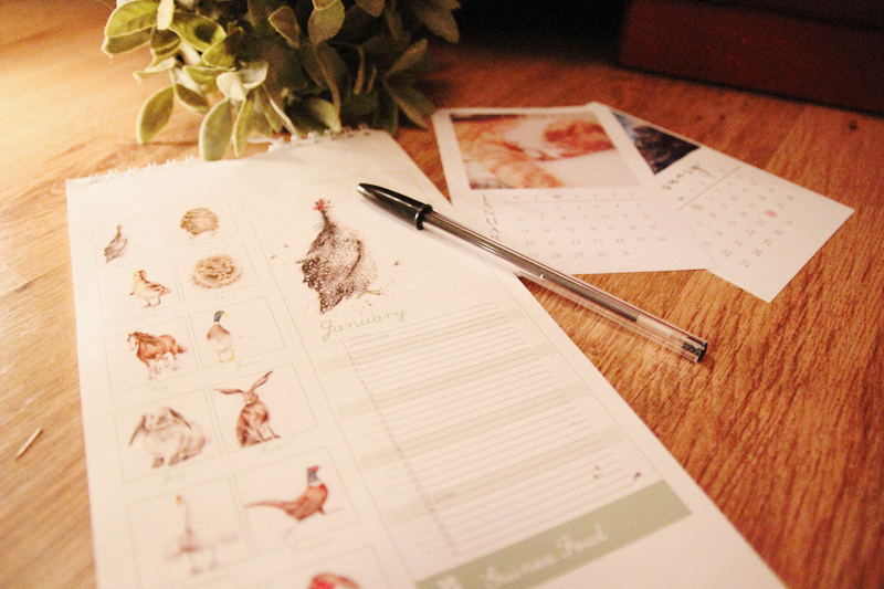 Read Goals for 2014 by April