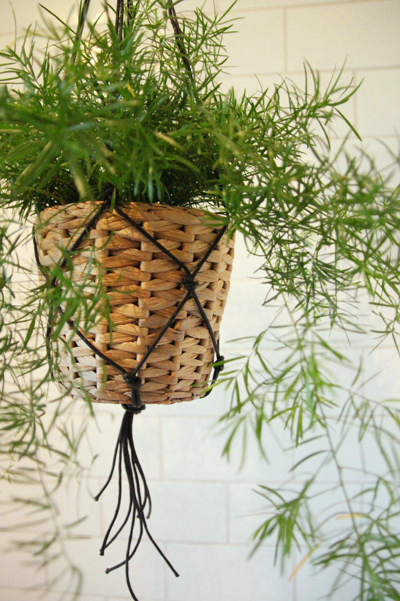 diy macrame hanging planter diy macrame hanging basket april everyday 2649