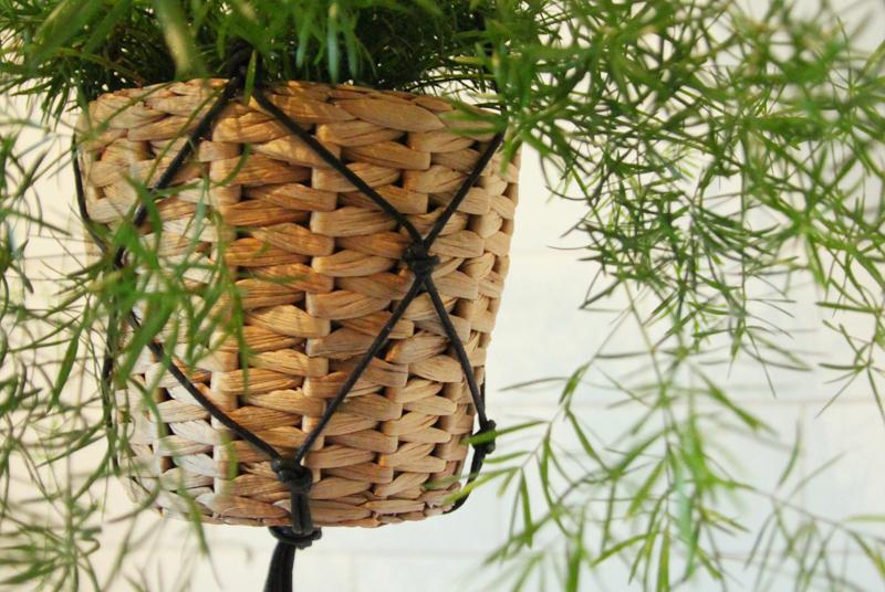 Read DIY Macrame Hanging Basket by April