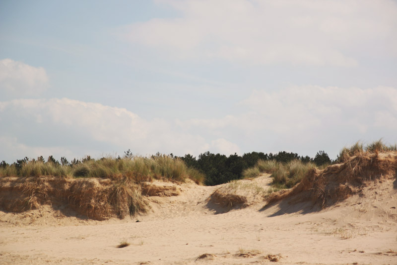 Wells-next-the-sea Beach Sand Dunes