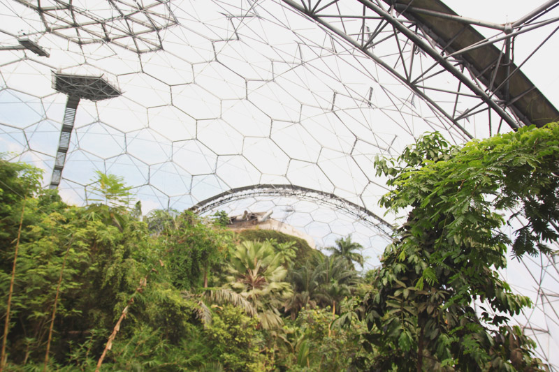 Eden Project - Rainforest Biome