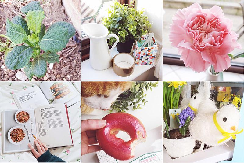Read March Recap by April