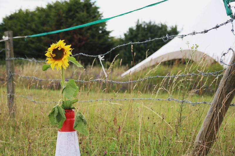 Hitchin Lavender Farm Wedding