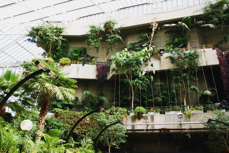 Read Exploring the Barbican Conservatory by April