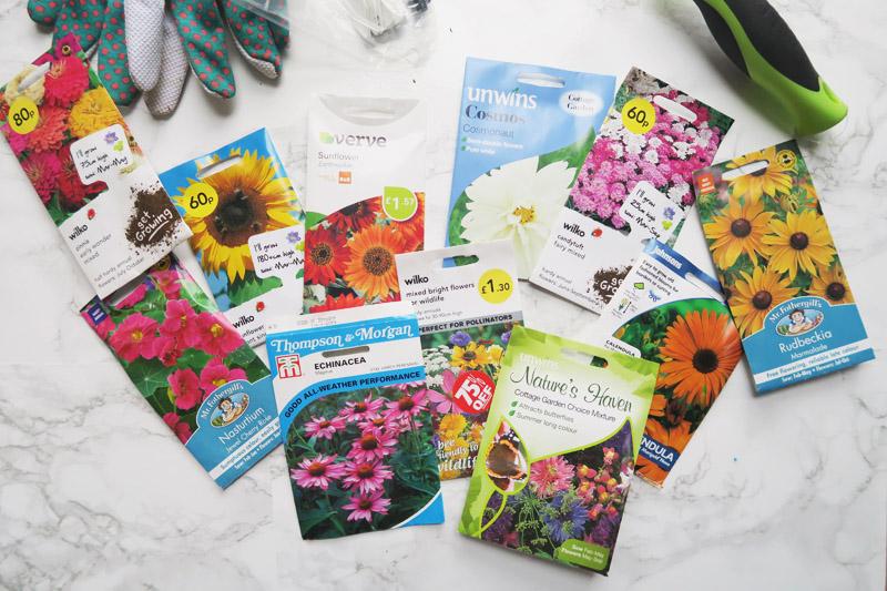 Vegetable Garden, Sowing Seeds