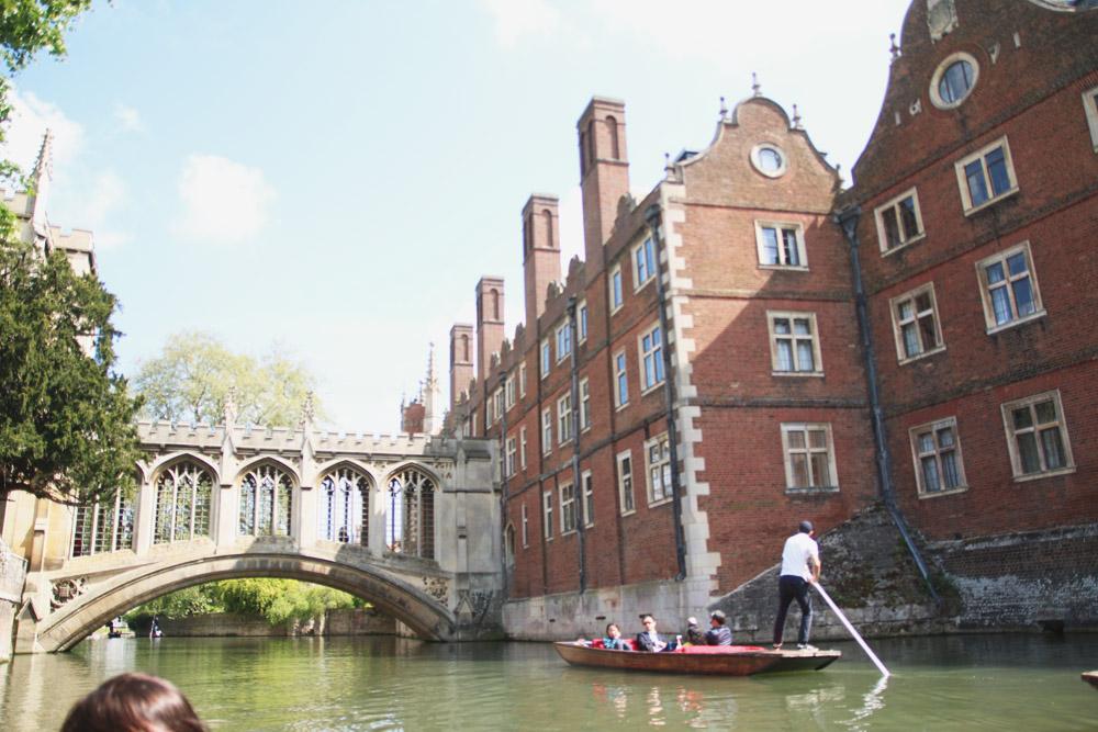 Punts in Cambridge