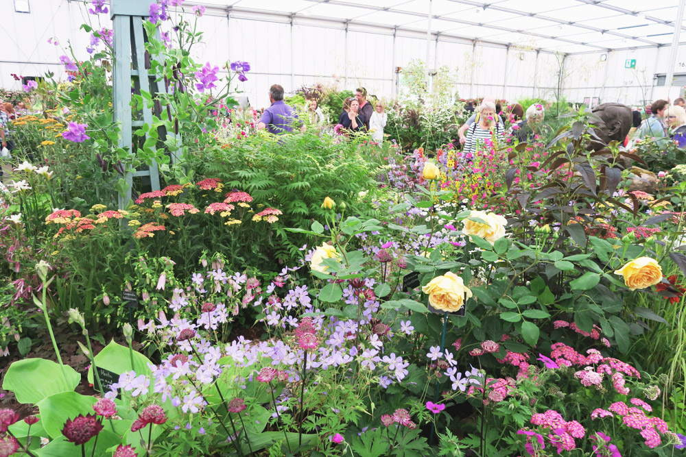 Read Gardeners' World Live 2016: The Floral Marquee by April
