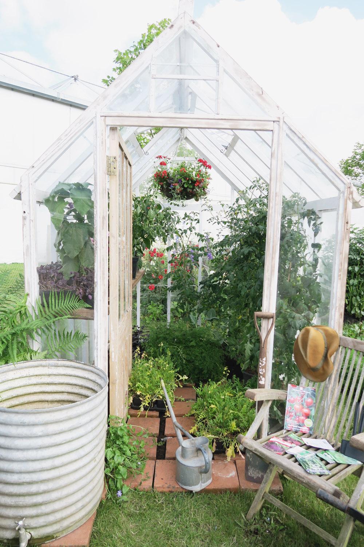 Gardeners World Live 2016 Show Gardens - The Allotment Garden