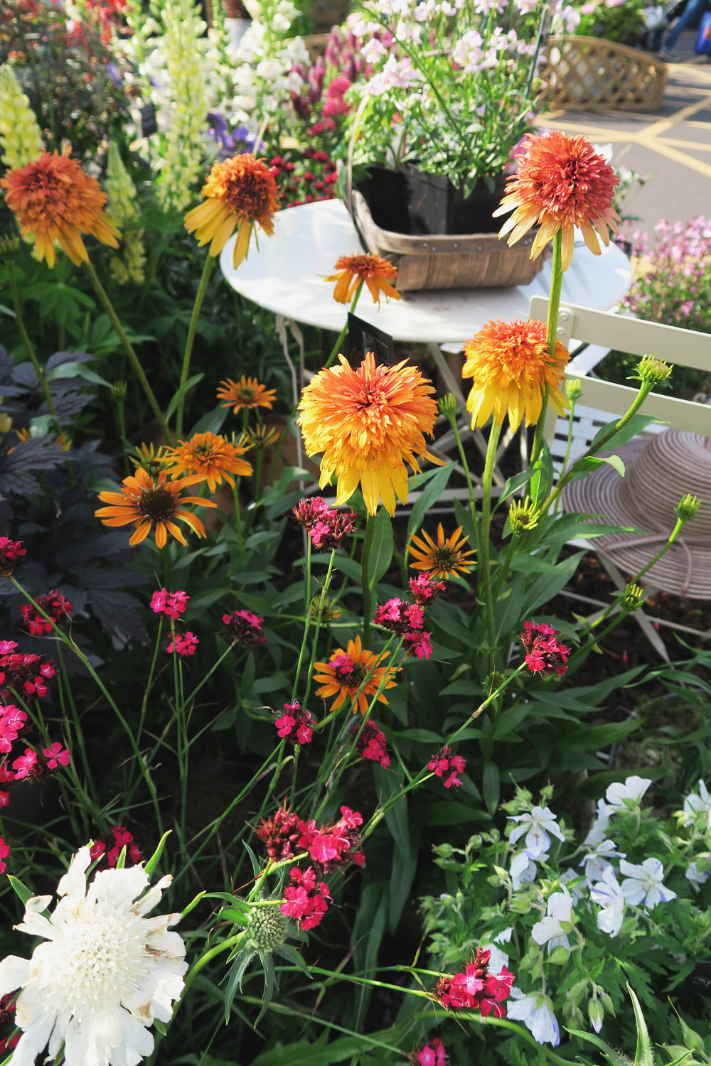 Gardeners' World Live 2016 Floral Marquee