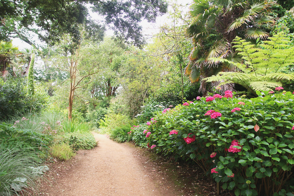 Read Abbotsbury Subtropical Gardens by April