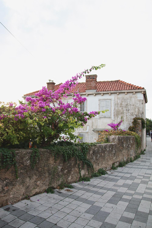 Dubrovnik House, Croatia