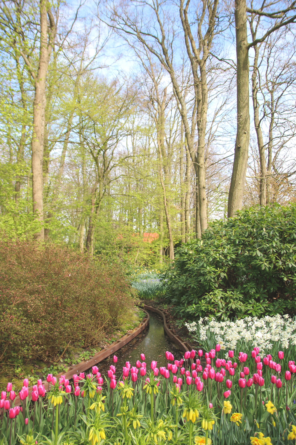 Flower Displays at Keukenhof Gardens, Holland