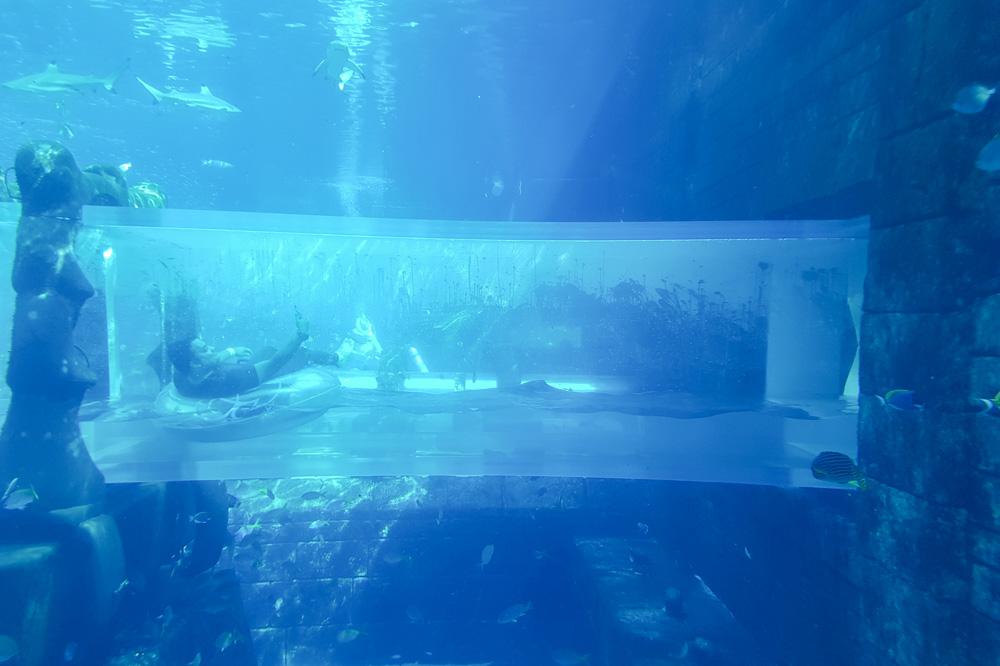 Shark Attack Ride at Atlantis the Palm, Dubai