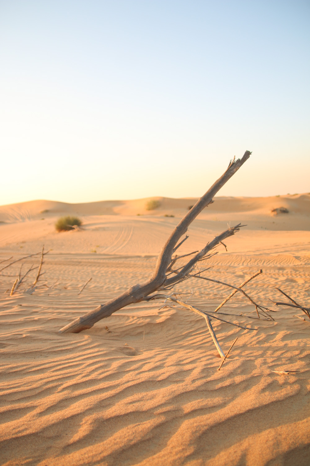 Sun Setting over the sand dunes in the Dubai Desert