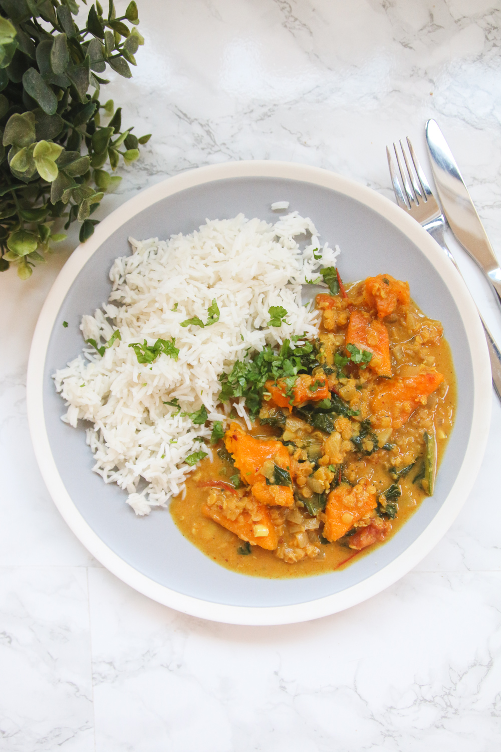 Vegan Pumpkin & Lentil Curry