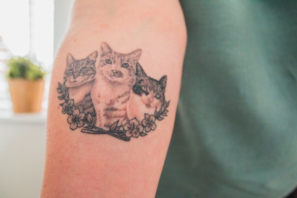 Three Cat Tattoo on Forearm