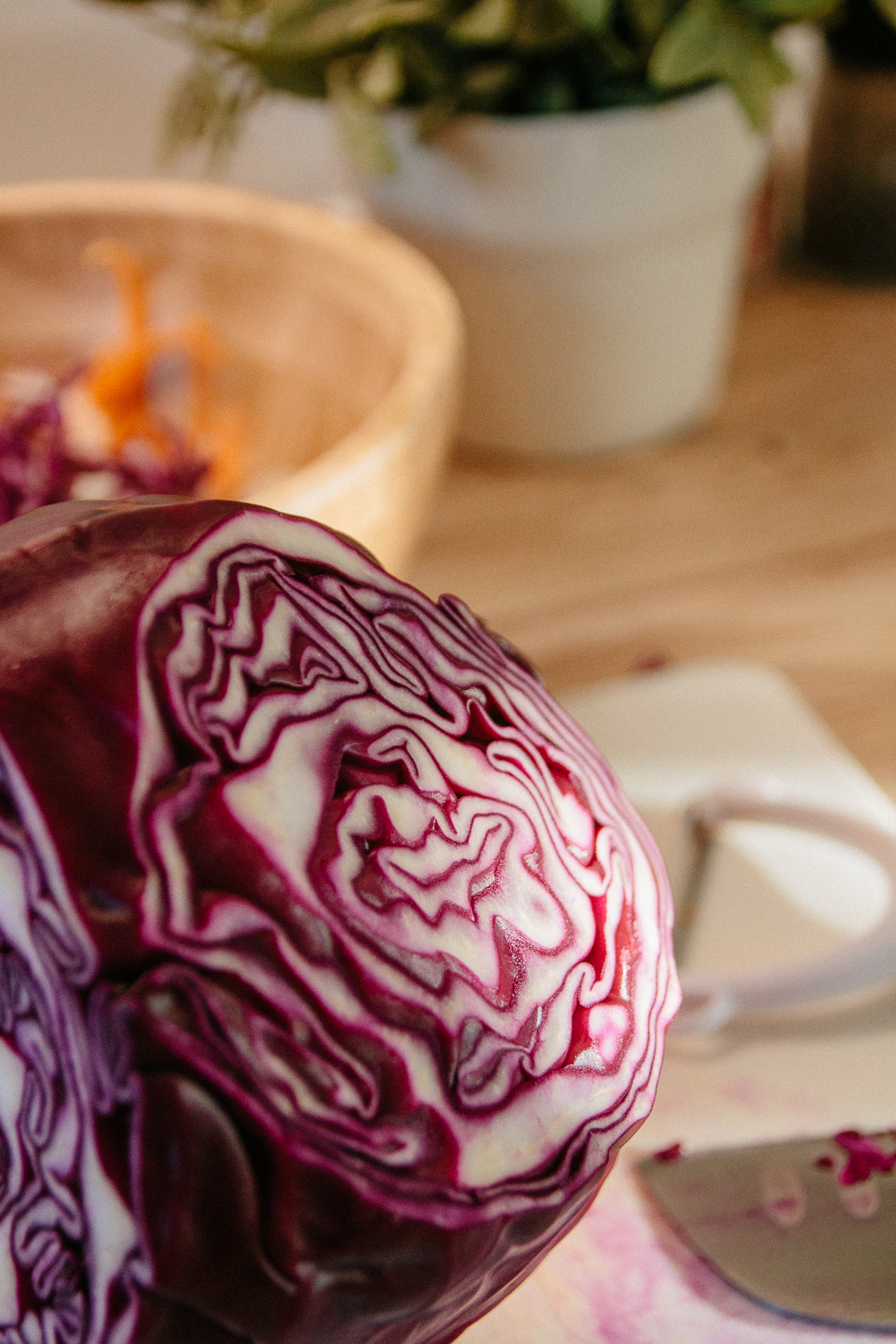 Details of a Red Cabbage