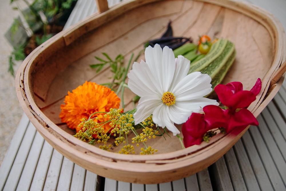 Flower Harvest Vegetable Garden
