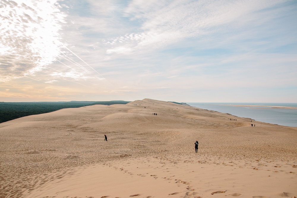 View from the top of Dune du Pilat